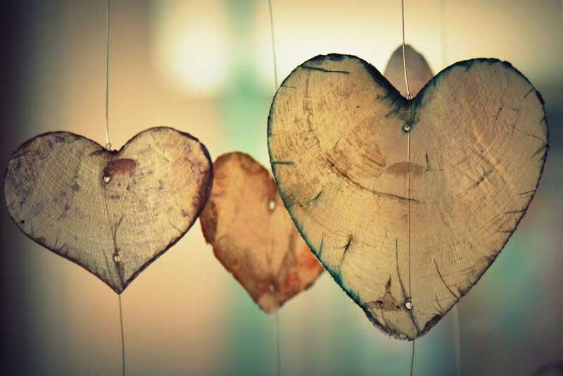 corazón trasplante personalidad