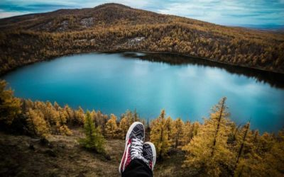 Calidad de vida y contacto con la naturaleza: los efectos de los entornos naturales sobre nuestro bienestar.