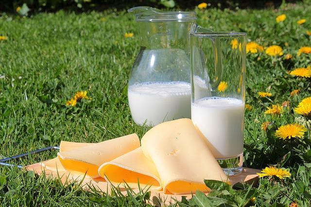La leche y sus derivados son ricos en calcio que es bueno para las rodillas