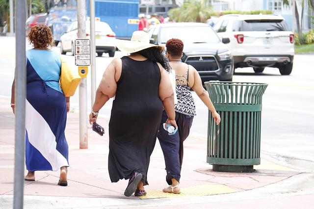 La obesidad es una de las principales causas de ingerir alimentos tóxicos para el organismo